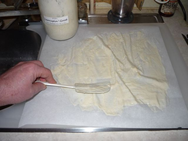 Spreading starter on parchment with a cake spatula.
